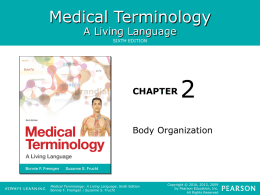 Chapter 2 - Body Organization