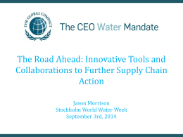 The Road Ahead - CEO Water Mandate