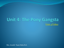 Unit 4: The Pony Gangsta