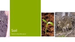 2016 Soil Intro