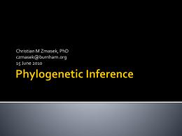 Phylogenetic Methods for *