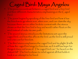 Caged Bird- Maya Angelou