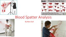 Blood Splatter Analysis - Northport