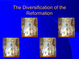 The Diversification of the Reformation