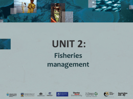 Unit 2 (Management)