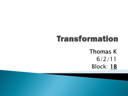Geometry- Transformation Powerpoint