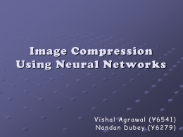 Neural Networks - CSE