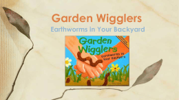 Earthworms in Your Backyard Garden Wigglers