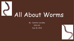 """all about worms"" powerpoint"