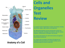 Cells and Organelles Test Review C) recognize levels of