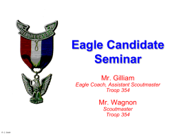 Troop 389 Eagle Candidate Seminar