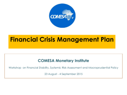 Financial-Crisis-Management-Plan