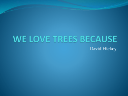 WE LOVE TREES BECAUSE