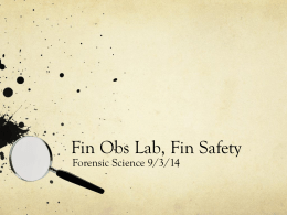 Fin Obs Lab, Fin Safety