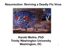 Resurrection- Reviving a Deadly Flu Virus (Moitra, 2015, presentation)