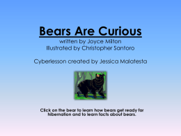 Bears Are Curious written by Joyce Milton Illustrated by Christopher