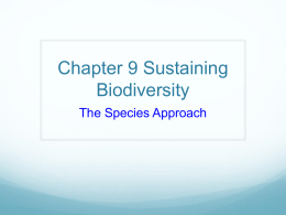 Chapter 9 Sustaining Biodiversity