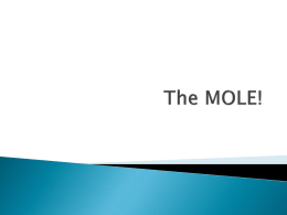 The MOLE! - Chemistry