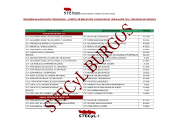 the PDF file - Stecyl-i
