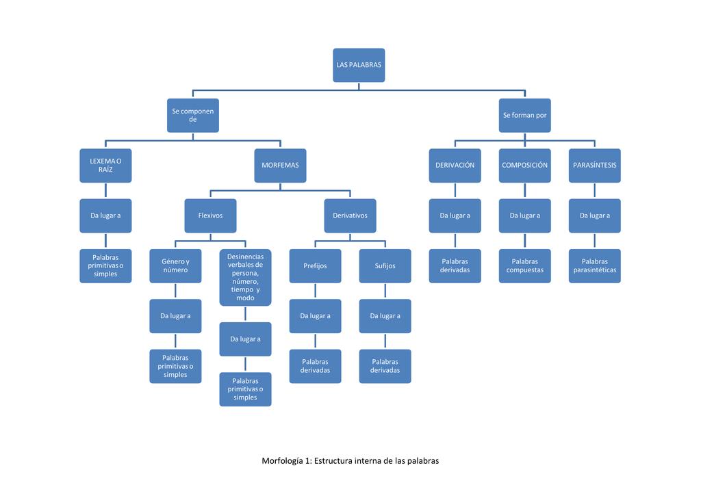 Morfología 1 Estructura Interna De Las Palabras