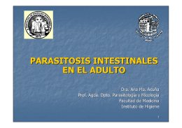 Parasitosis intestinales en el adulto