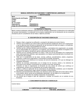 Manual de responsabilidades Auditor Interno
