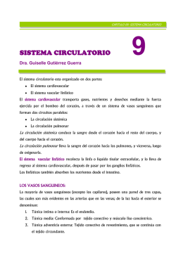 capítulo 9: sistema circulatorio