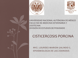 Cisticercosis porcina - Zoonosis
