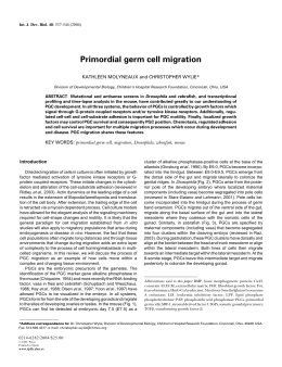 Primordial germ cell migration - The International Journal of