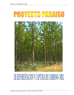 proyecto paraiso - mdl