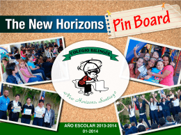 The New Horizons Pin Board