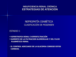 insuficiencia renal cronica. atencion