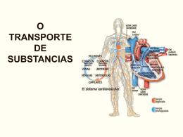 O TRANSPORTE DE SUBSTANCIAS Ficheiro