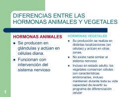 DIFERENCIAS ENTRE LAS HORMONAS ANIMALES Y VEGETALES