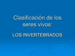 Clasificacion invertebrados. Biología y Geología