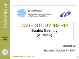IBERIAN CASE STUDY: Steps in the process of