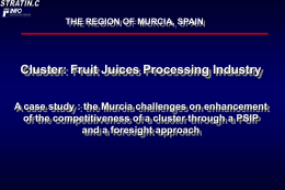 Fruit Juices Processing Industry - A case study