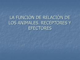 la función de relación de los animales
