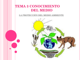 ecosistema - WordPress.com