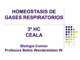 Homeostasis de Gases Respiratorios