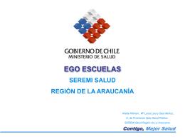 Logros Estrategia Ego Esc 2008. Región de La Araucanía