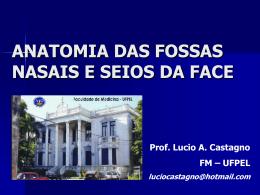ANATOMIA DO NARIZ E SEIOS PARANASAIS