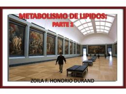 METABOLISMO DE LIPIDOS 1ï