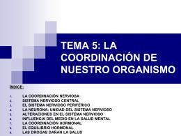 TEMA 5: LOS SISTEMAS DE COORDINACIÓN