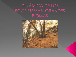 DINÁMICA DE LOS ECOSISTEMAS. GRANDES BIOMAS
