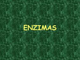 enzimas.pps