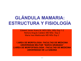 GLÁNDULA MAMARIA: ESTRUCTURA Y FISIOLOGÍA