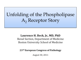 Unfolding of the Phospholipase A2 Receptor Story (PPT / 13904 KB)