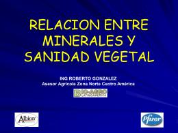 relacion entre minerales y sanidad vegetal