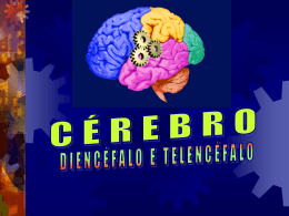 Diencéfalo e Telencéfalo